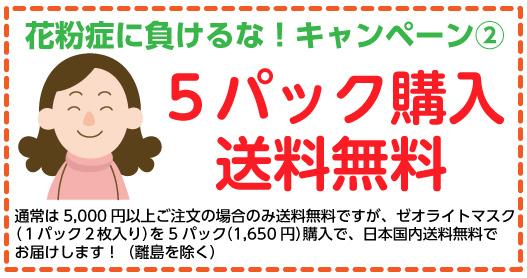 ゼオライトマスク5パック購入で送料無料